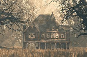 _0025_haunted house
